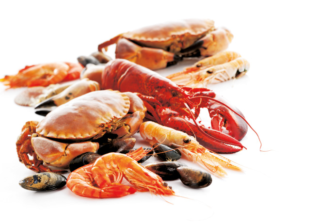 Crab Fish Cakes Saturday Kitchen