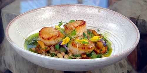 Roast scallops with girolles, brown shrimps, white beans and cucumber