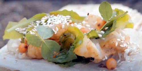 Langoustine-tacos.jpg