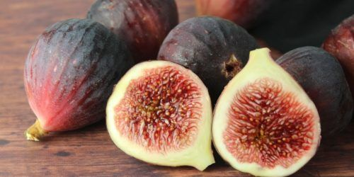figs-image.jpg